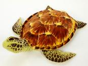 Plyšová želva hnědá