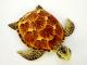 Plyšová želva hnědá-2.jpg
