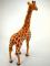 Plyšová žirafa stojící-3.jpg