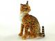Kočka Ocelot - 4.jpg
