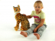 Kočka Ocelot - 6.jpg