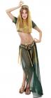 Harémová tanečnice - kostým