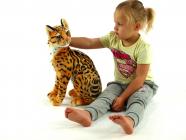 Kočka Micka ocelot
