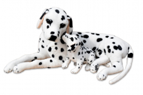 Plyšový pes Dalmatin se štěňátkem, délka 88cm, výška 41cm