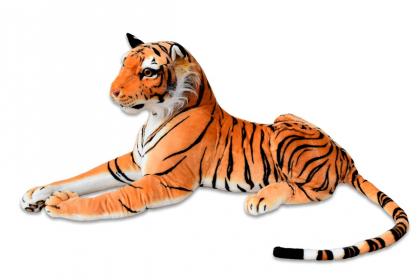 Tygr střední oranž - 1.jpg