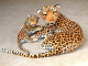 Plyšová leopardí máma s mládětem2.jpg