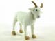 Koza Líza - 6.jpg