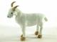 Koza Líza - 8.jpg